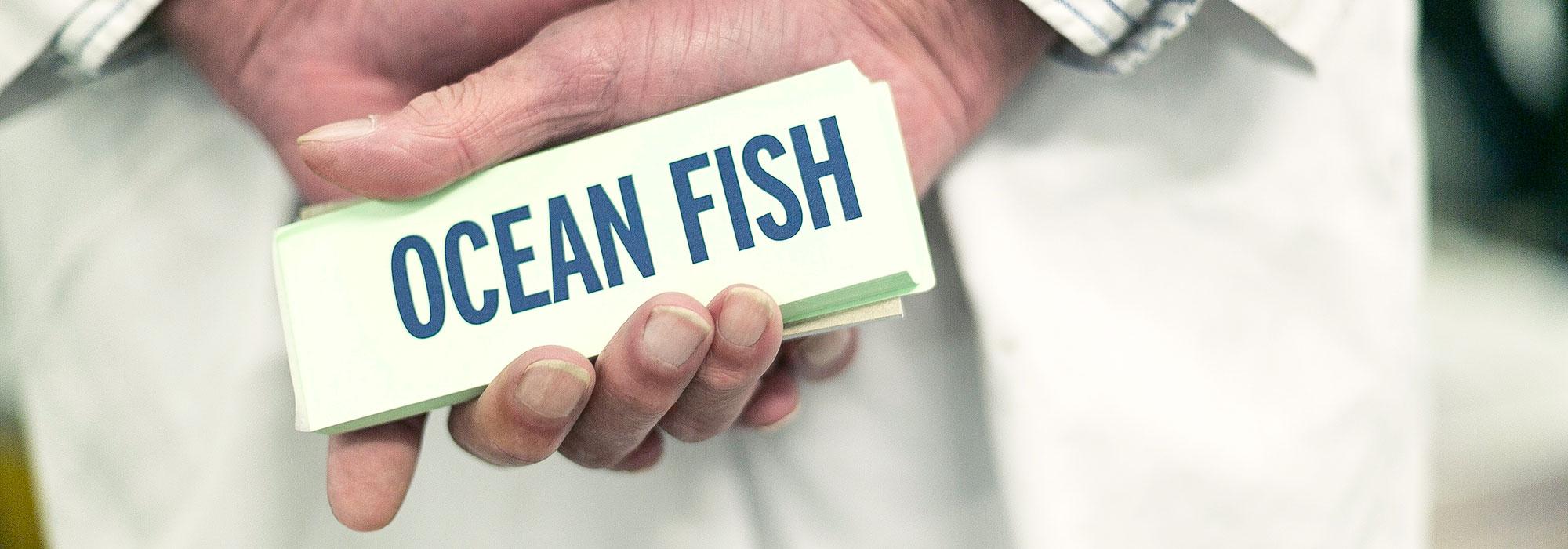 fish-buyers-hands-at-brixham-fish-market - Ocean Fish